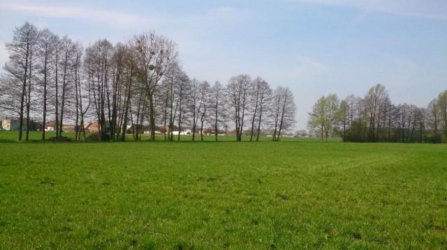 Działka budowlana Grąblewo