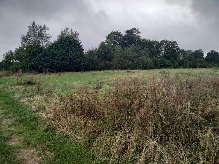 Działka rolna Wałcz