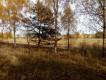 Działka rolna Rakowo, Rakowo