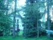 dom wolnostojący, 9 pokoi Wieliczka Centrum, ul. Krakowska 19B