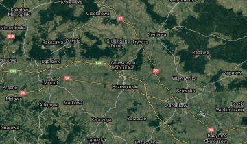 Działka leśna Gorliczyna Pod Sośniną. Zdjęcie 1