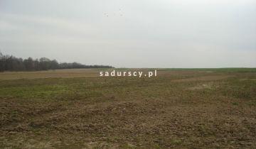 Działka inwestycyjna Morawica. Zdjęcie 25