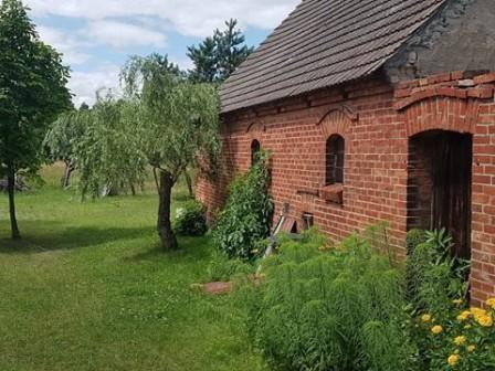 Działka siedliskowa Annowo