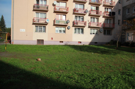 Mieszkanie 1-pokojowe Elbląg, ul. Ogrodowa