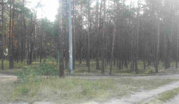 Działka leśna Popowo-Letnisko. Zdjęcie 1