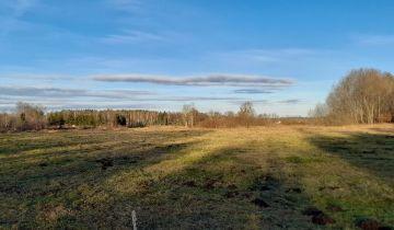 Działka rolna Żelimucha. Zdjęcie 1