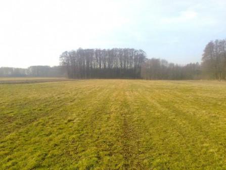 Działka rolna Kalinko