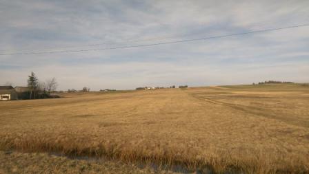 Działka rolno-budowlana Budzisław