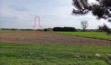Działka rolna Sudzin. Zdjęcie 1
