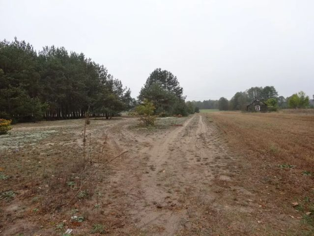 Działka budowlana Kiciny