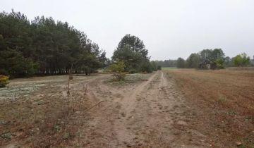 Działka budowlana Kiciny. Zdjęcie 1