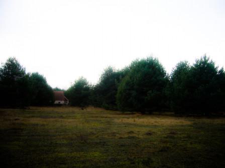 Działka rolna Wygon