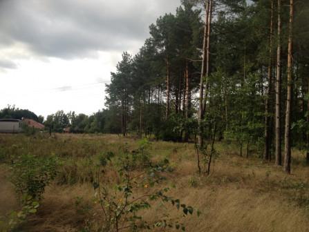 Działka rolno-budowlana Wojtkowizna
