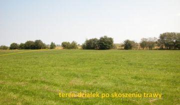 Działka rolna Sarbia. Zdjęcie 1