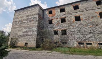 Nieruchomość komercyjna Gospodarz, ul. Cegielniana. Zdjęcie 1