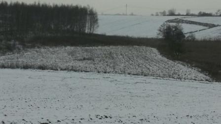 Działka rolna Nasiegniewo