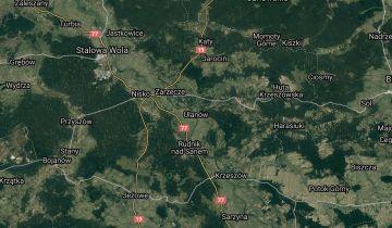 Działka leśna Ulanów Zwolaki. Zdjęcie 1