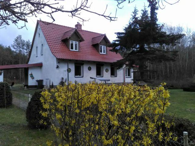 dom wolnostojący, 5 pokoi Mirosławiec, Zacisze