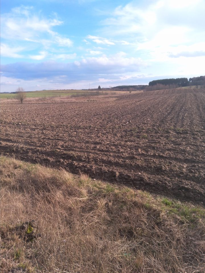 Działka rolna Kierwiny
