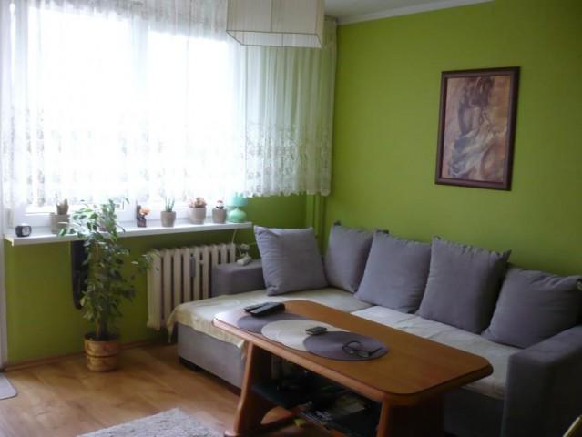 Mieszkanie 1-pokojowe Głogów, ul. Armii Krajowej 11