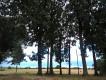 Działka rolno-budowlana Ostrowite Ostrowite