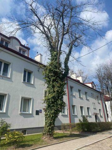 Mieszkanie 2-pokojowe Łódź Widzew, ul. Skalna