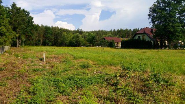 Działka rolno-budowlana Nowosielec