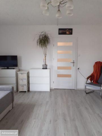 Mieszkanie 2-pokojowe Kalwy