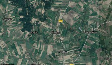 Działka rolna Niestum. Zdjęcie 1