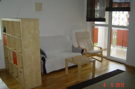 Mieszkanie 1-pokojowe Borkowo, ul. Współczesna