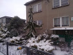 dom wolnostojący, 5 pokoi Miłomłyn