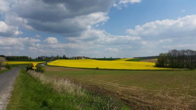 Działka rolna Zawonia