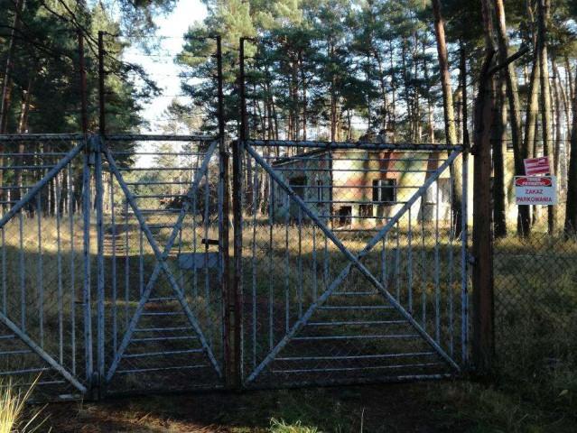 Działka leśna Gubin