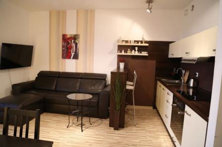 Mieszkanie 1-pokojowe Katowice Dąb, ul. Johna Baildona