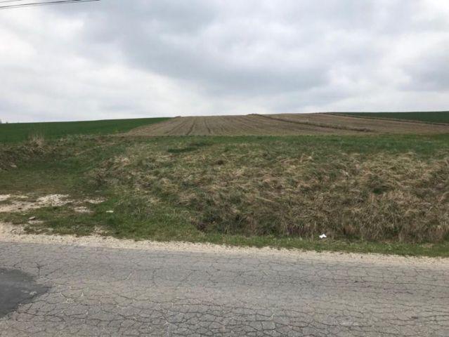 Działka rolno-budowlana Gołaczewy, ul. Jasna
