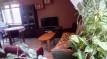 Mieszkanie 3-pokojowe Nowa Ruda, ul. Niepodległości 9A