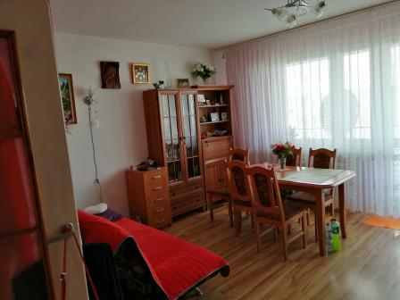 Mieszkanie 3-pokojowe Wołomin, ul. Mieszka I 14B