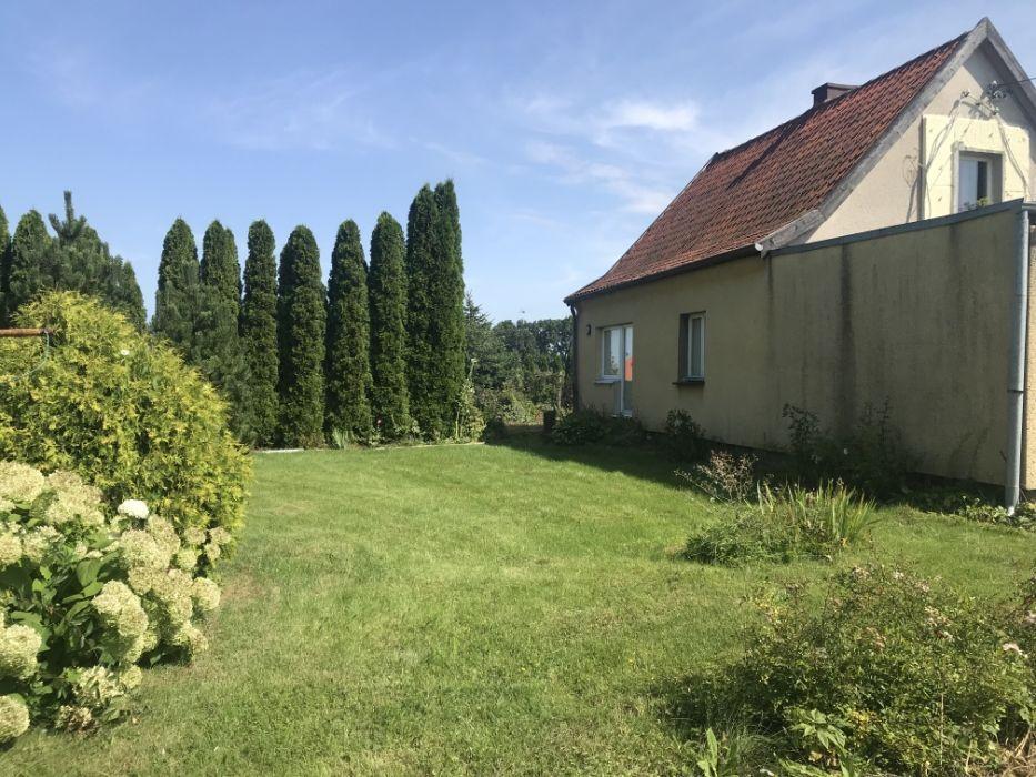 dom wolnostojący Korsze