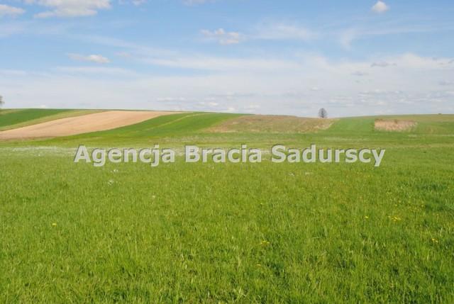 Działka rolna Ściborzyce
