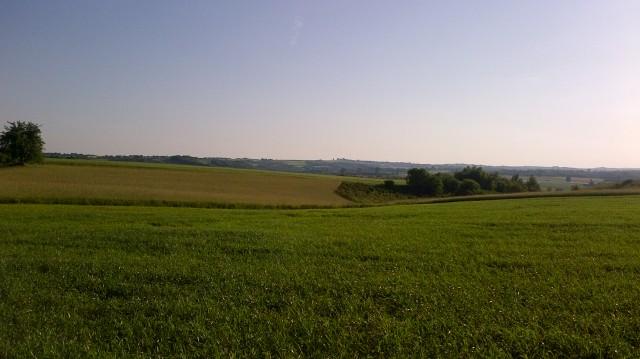 Działka rolno-budowlana Przepiórów Krasków
