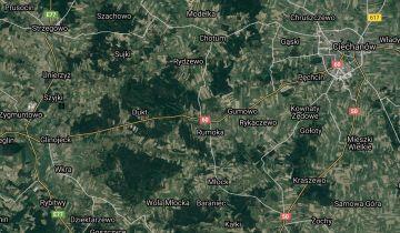 Działka leśna Ościsłowo. Zdjęcie 1