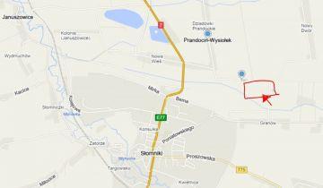 Działka siedliskowa Prandocin-Wysiołek. Zdjęcie 5