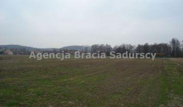 Działka inwestycyjna Morawica. Zdjęcie 6