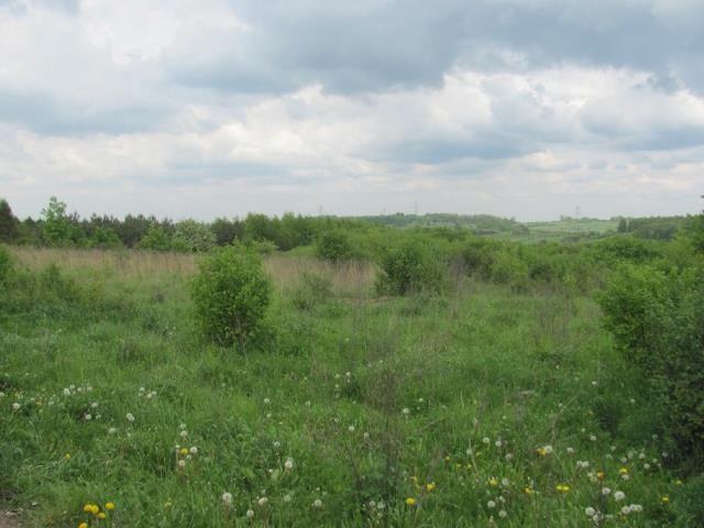 Działka rolno-budowlana Góra Siewierska, ul. Ogrodowa