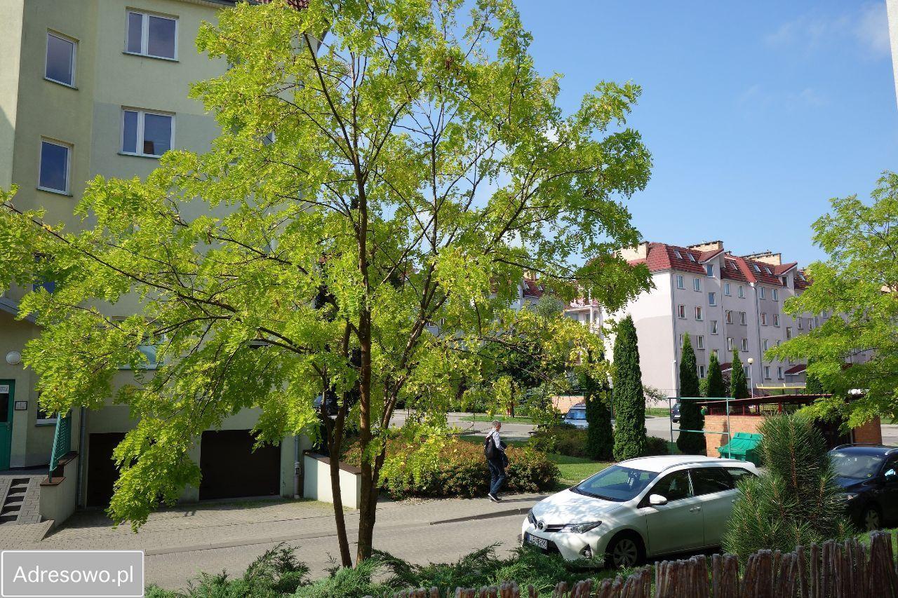 Mieszkanie 2-pokojowe Łódź Romanów, ul. Romanowska 55H