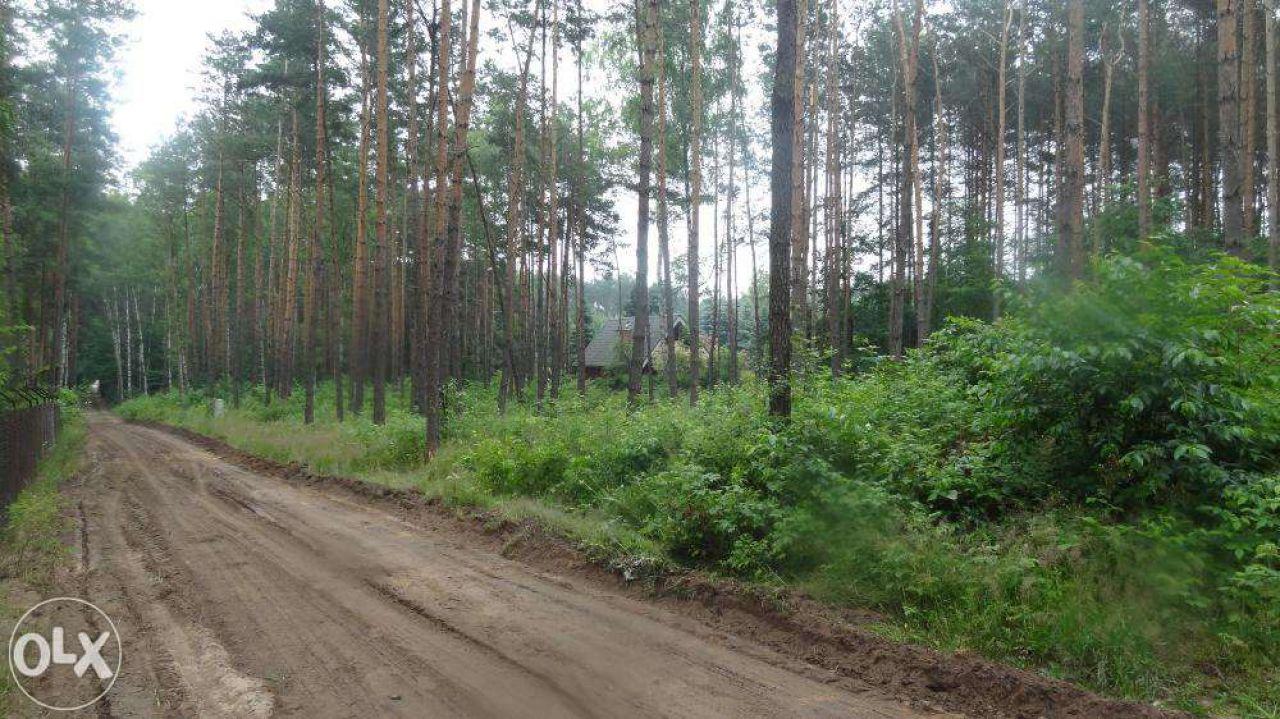 Działka budowlana Zofiówka, ul. Cienista