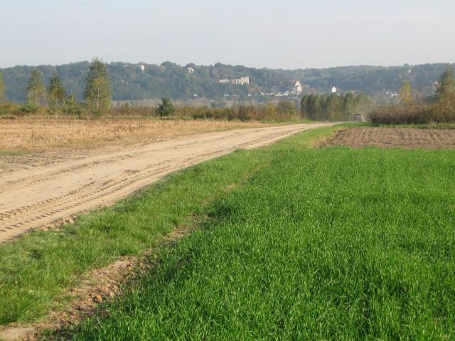 Działka budowlana Wojszyn