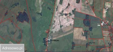 Działka rolna Zaręby