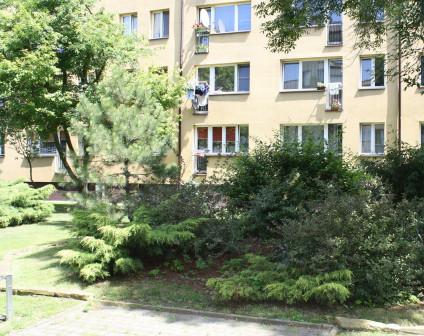 Mieszkanie 2-pokojowe Brwinów, ul. Pszczelińska 8