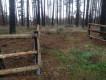 Działka leśna Borek Kamienny